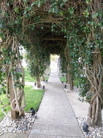 Arbor Guest House: Walkway to the Garden Room