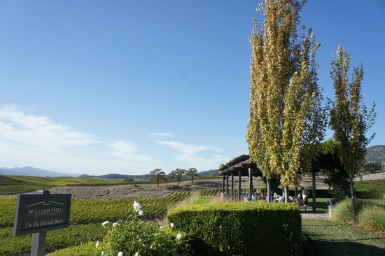 William Hill Estate Winery : relaxing atmosphere