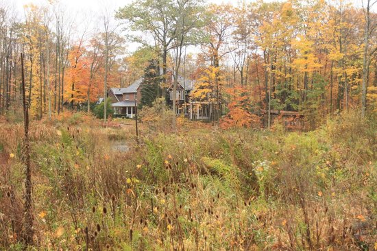 Ridgemoor B&B: view of the house from beside the pond