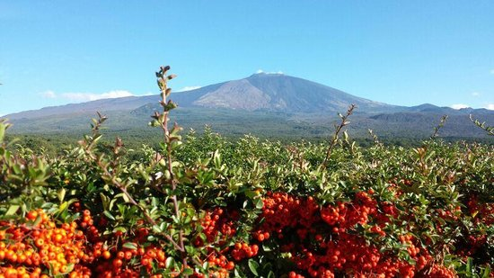 Fucina di Vulcano: panorama fuori dal ristorante