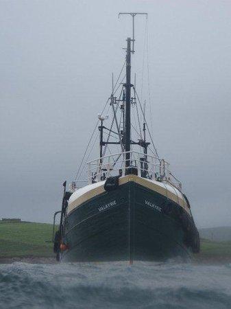MV Valkyrie: MV- Valkyrie