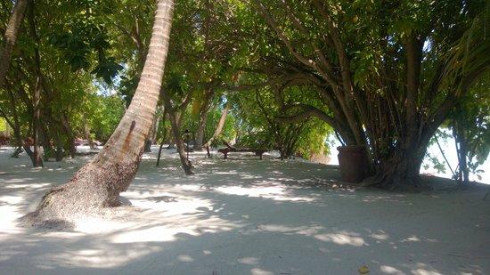 Sun Island Resort: Пляж перед улучшенным бунгало