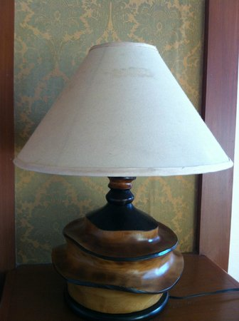Baumanburi Hotel: Lámparas manchadas y sucias