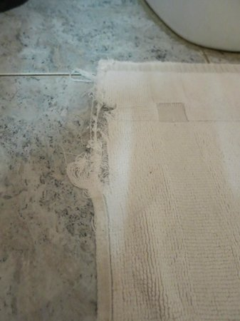 Point de Vue Guesthouse and Restaurants: torn bath mat