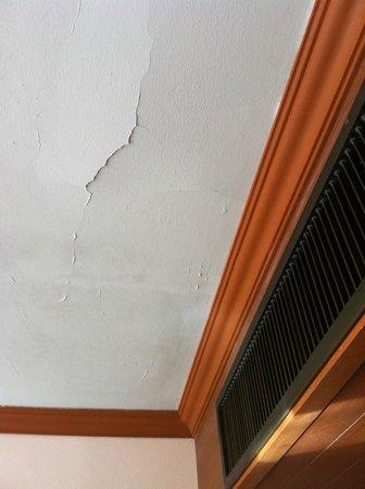 Baumanburi Hotel : Grietas en el techo de la habitación