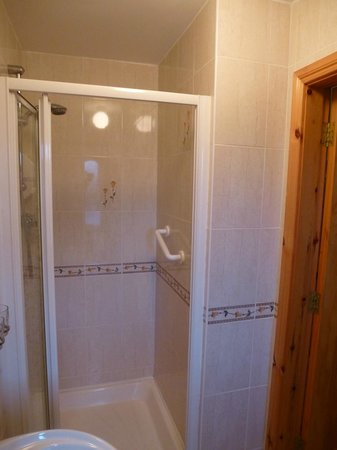 Kilbawn Country House : Bathroom