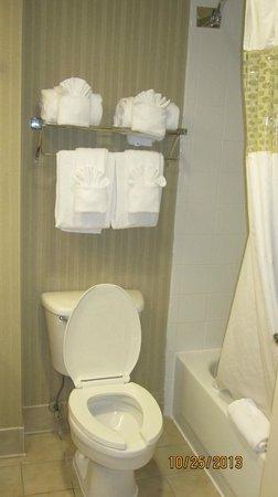Hampton Inn Charlotte - Uptown: Bathroom