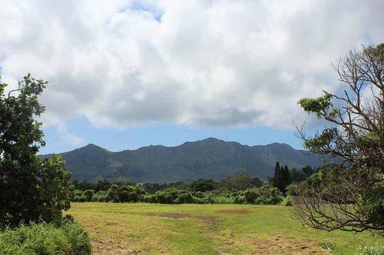 View from Kauai Palms Hotel of Hoary Head Mountain Range