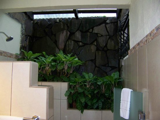 Arenal Springs Resort and Spa: rain watering the plants in the shower