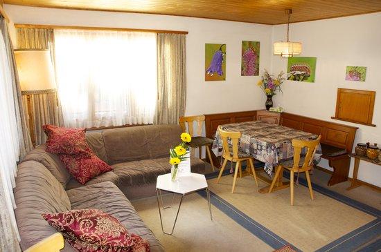 Chesa Albris Bed & Breakfast: Living Room