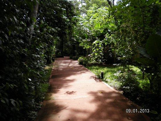 Sol Cataratas Hotel: camino