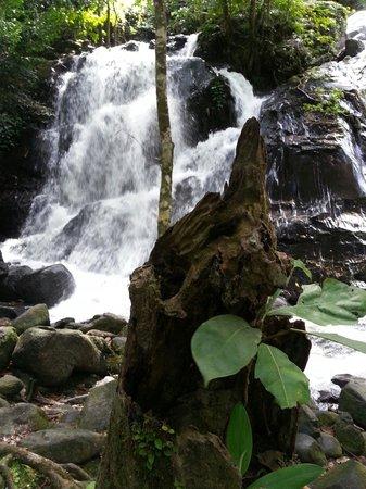 Ton Nga Chang Wildlife Sanctuary: Tong nga chang waterfall