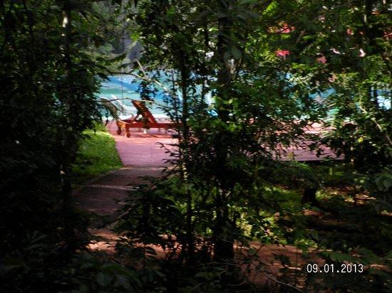 Sol Cataratas Hotel: Camino hacia la pileta