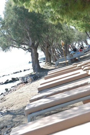 Domes of Elounda, Autograph Collection: Beach quite zone area beds