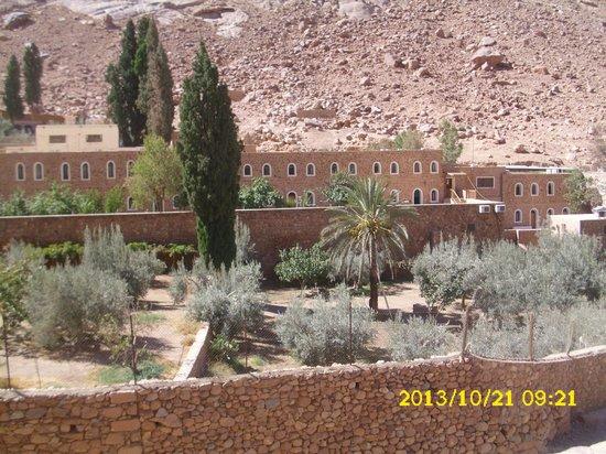St. Catherine's Monastery: Grounds