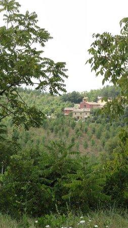 Locanda della Valle Nuova: View from terrace