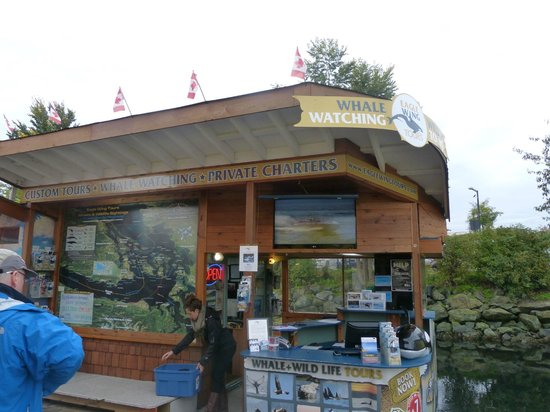 Eagle Wing Whale Watching Tours: Eagle Wing Tours on Fishermans Wharf