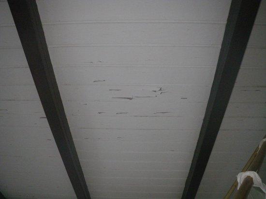 Domaine De La Pointe Batterie : plafond