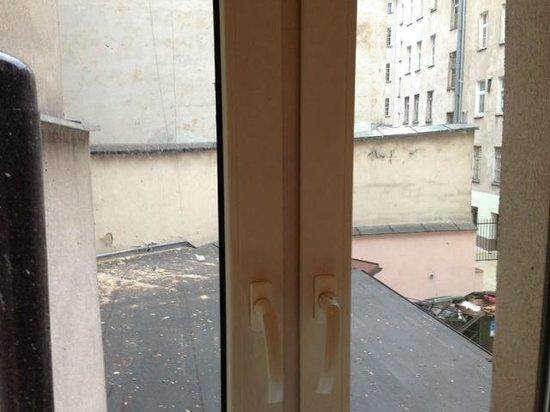 Europejski Hotel: Widok z okna