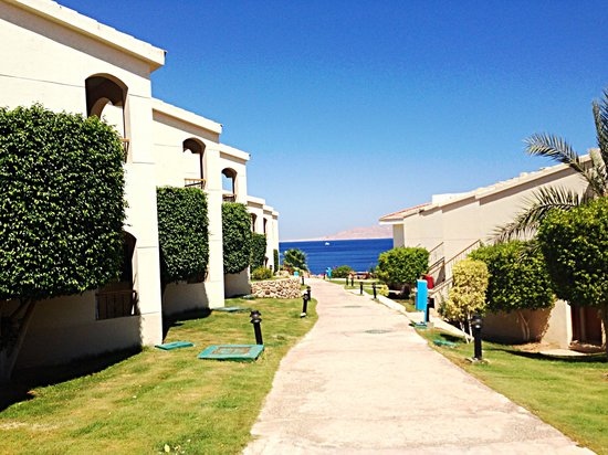 Island View Resort: !)