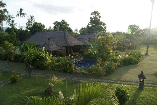 Amertha Bali Villas: vistas de la villa