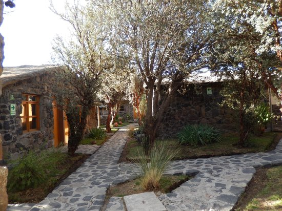 Casa Andina Standard Colca : the setting is special