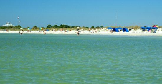 Honeymoon Island Florida Kayak Rental