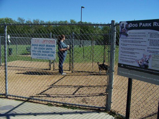 Double fencing - hang you leash here - - Tails and Trails dog park