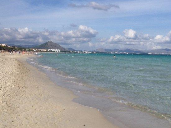 IBEROSTAR Albufera Playa : The Beach. My boys loved it.