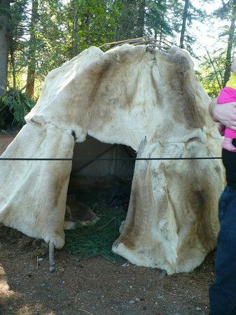Riverboat Discovery : Native Athabascan skin hut at the village