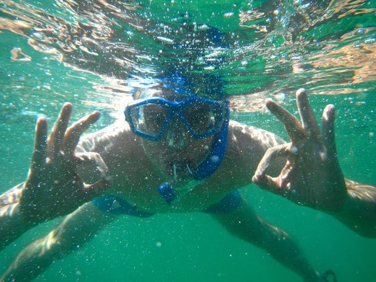 Easy Day Charters: Snorkeling