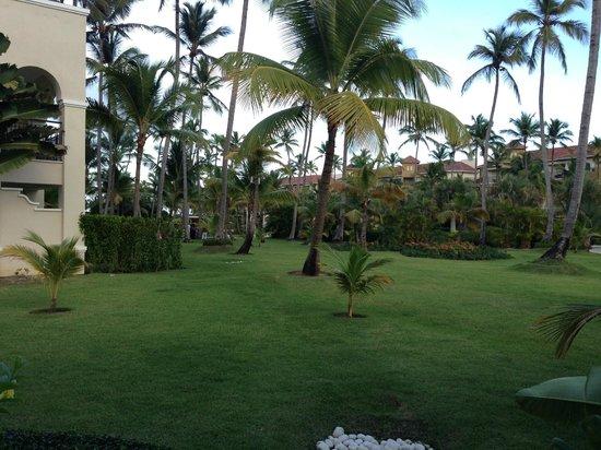 Now Larimar Punta Cana: landscaping