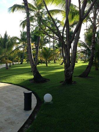 Now Larimar Punta Cana: To pool