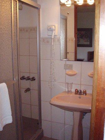 Hotel Buena Vista: Small but clean