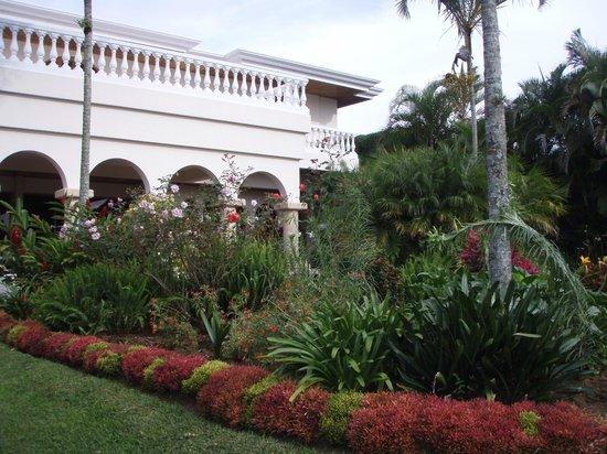Hotel Buena Vista: Lovely grounds