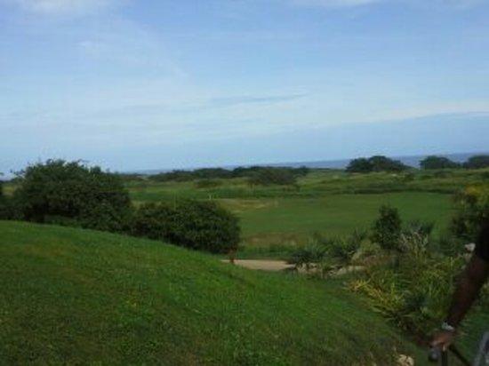 Royal Isabela : paisaje