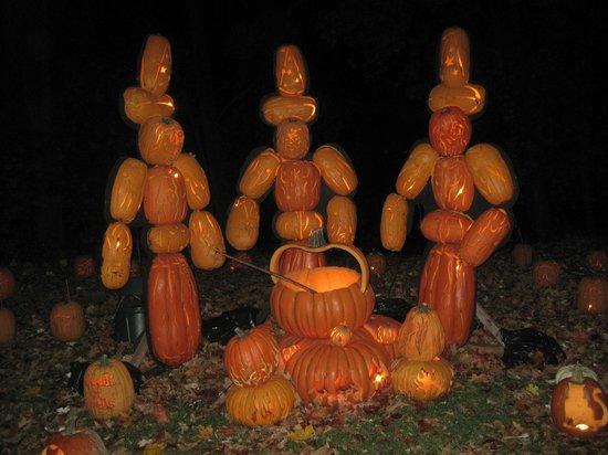 The Great Jack-O-Lantern Blaze : witches