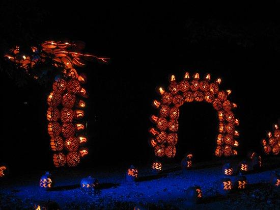 The Great Jack-O-Lantern Blaze : Chinese dragon