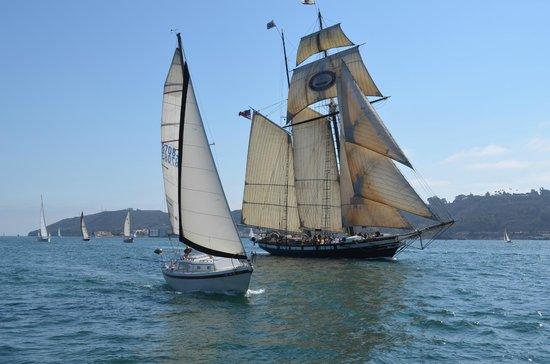 Seaforth Boat Rental &Tours