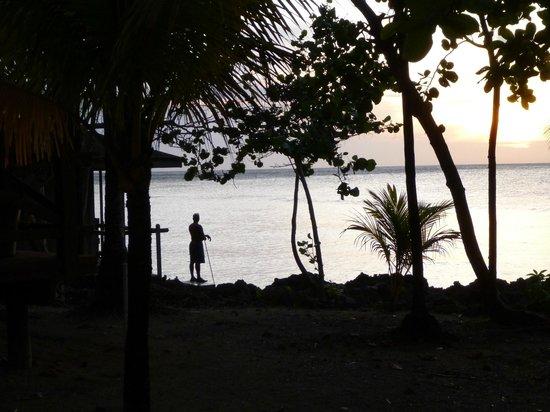 Anthony's Key Resort: Shore diving