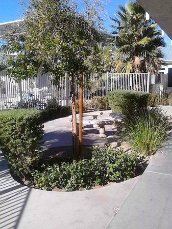Motel 6 Las Vegas - Tropicana : Sitting area outside pool