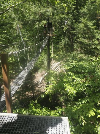 Alpine Adventures Outdoor Recreation: bridges