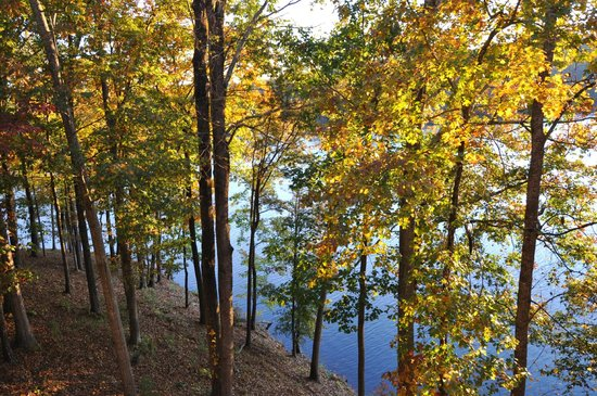 Atlanta Evergreen Marriott Conference Resort: The view of the lake from our room/balcony