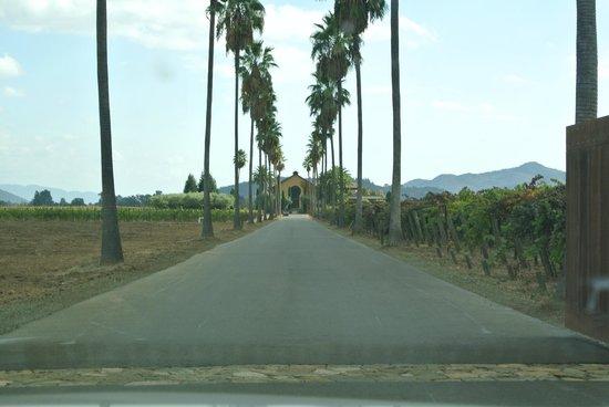 Round Pond Estate: Entry Drive