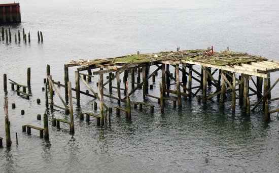 Cannery Pier Hotel : Weathered dock outside the hotel