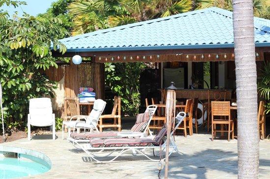Hawaiian Oasis B&B: Tiki Bar