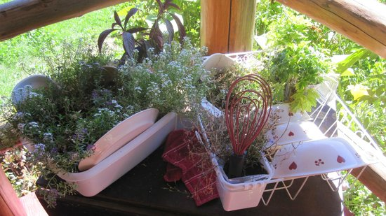 Cedar Mountain Farm Bed and Breakfast: Cool gardening on the front porch of The Big House