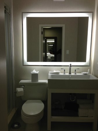 well lit clean bathroom picture of renaissance. Black Bedroom Furniture Sets. Home Design Ideas