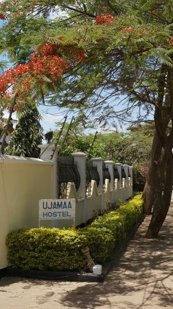 Ujamaa Hostel: Welcome!