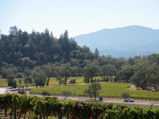 Joseph Phelps Vineyards: Joseph Phelps Terrace Tasting